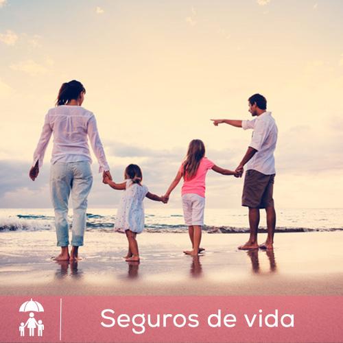 seguros_vida